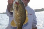 5-30 beau bass